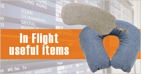 In Flight useful items